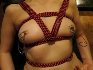 Modesty Ablaze tries Nipple Clamps
